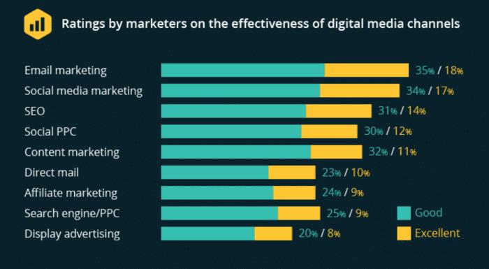 Email marketing hiệu quả hơn SEO, social media và affiliate.